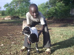 goat donation support the orphan