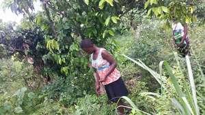 Lilian planting Maize