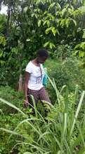 Shifah in the garden hard working