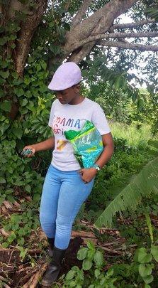 Maize Planting