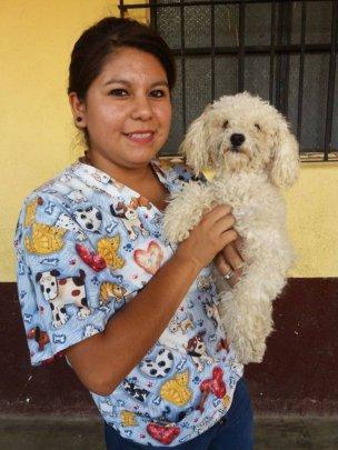 Gaby volunteering at pet clinic