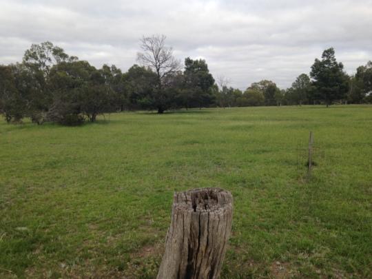 Woodlands Historic Park