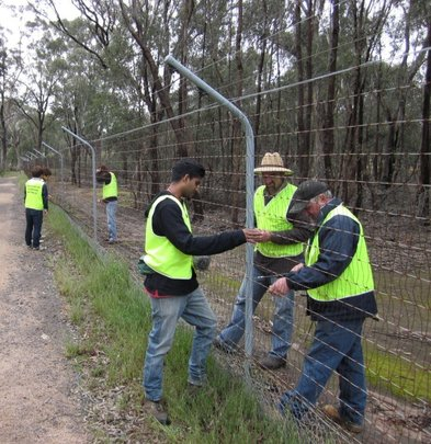 Volunteers check and maintain the important fence