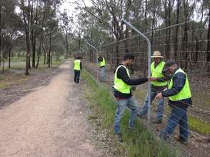 Volunteers maintaining the important fence