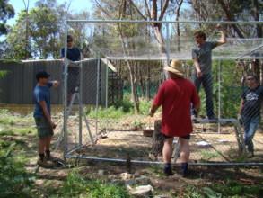 Wiring the aviary