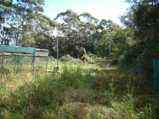 Our future rehabilitation area