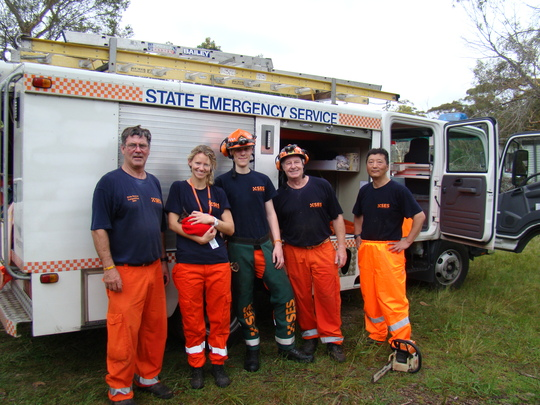 State Emergency Services after tree removal.