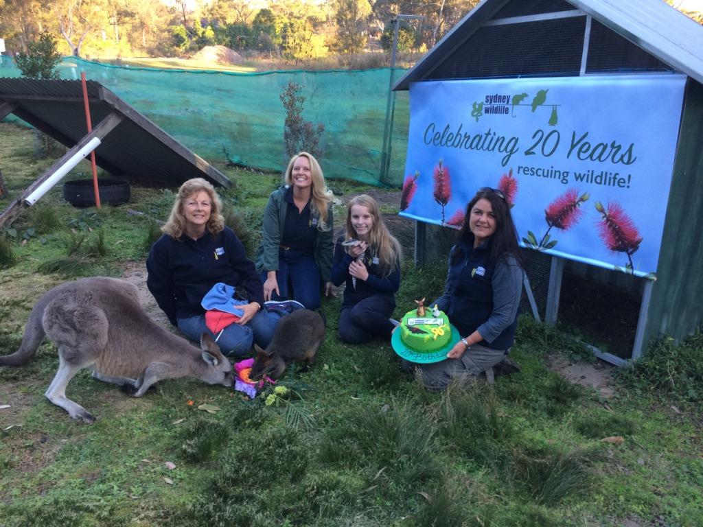 Sydney Wildlife celebrates 20 years