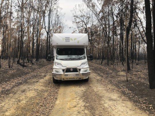 Driving through the devastation