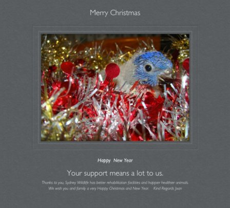 Merry Christmas and thank you to our supporters.