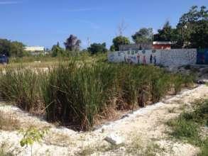 Fuentes de Vida wastewater treatment system