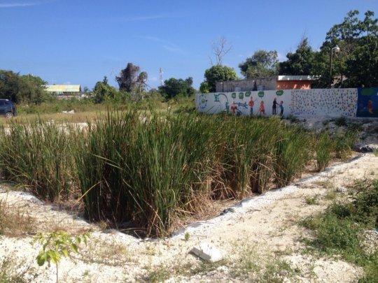 Wastewater treatment in progress