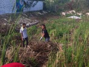 Volunteer day at Domingo Maiz