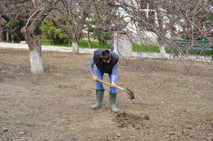 Digging for Spring