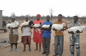 Training/Guinea Fowl for 30 Adolescent Guardians
