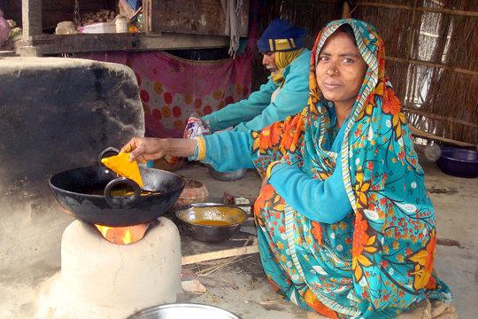 Madhubani, India Project - supported by Elanco