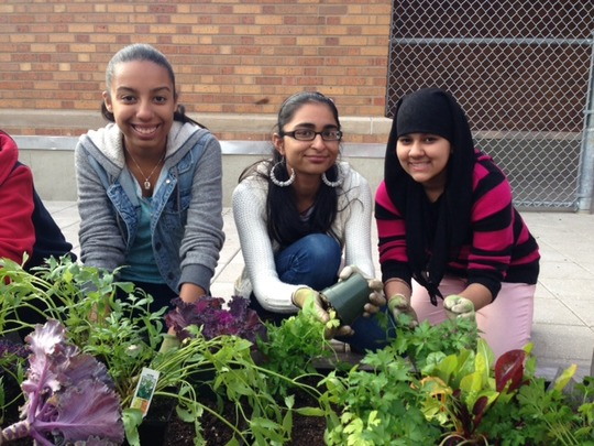 GK Students at Bryant High School's Rooftop Garden