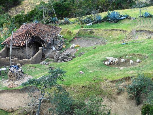 Don Delfin and Dona Victoria's home