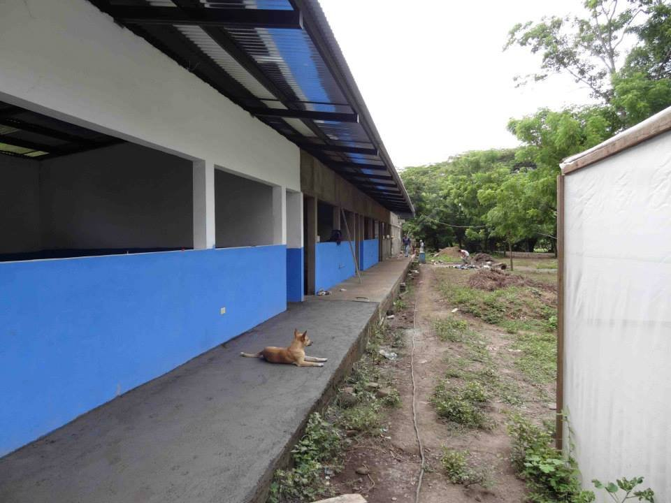 Long view of school