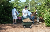 Support TGI at National Arab American Service Day