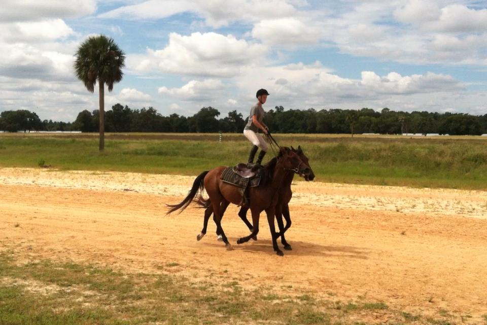 Roman riding training progress!