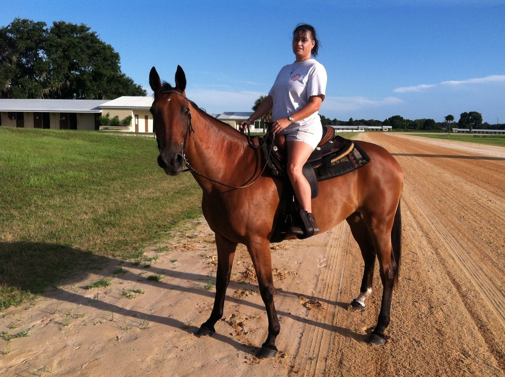 Q gets a saddle lesson!