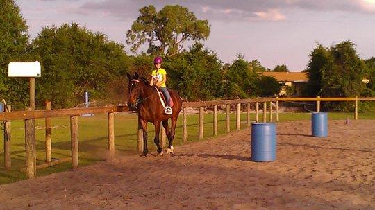 Having fun in the riding ring