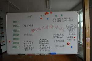 timetable of planned activities