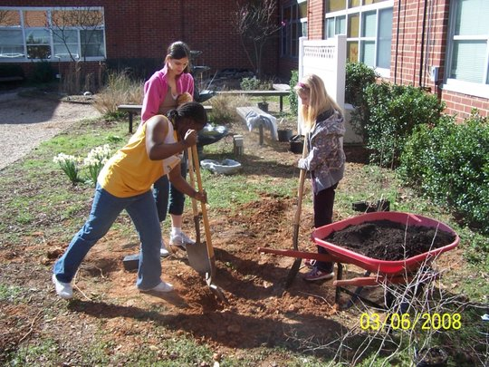 Blue Thumbs Rain Garden, Youth Planed and Built