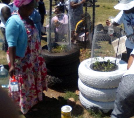 Gardens in tires