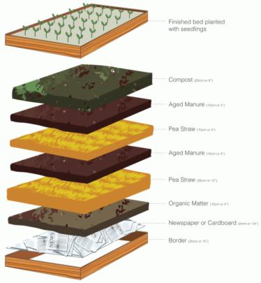 design for no dig garden