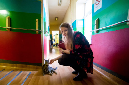 a cat and a volunteer in our the Shelter