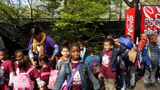 Bronx Zoo Trip