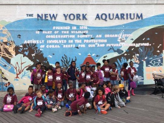 Field trip to the New York Aquarium