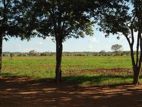 Construction site at Mbaya Musuma Basic School