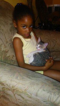 Hermoine Kitten - now named
