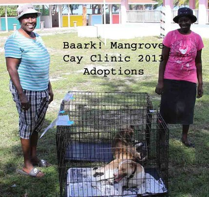 Mangrove Cay Clinic Adoptions