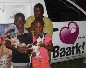 2 lucky pups from the clinic getting a new home