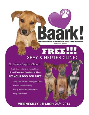 Poster for a free spay/neuter clinic
