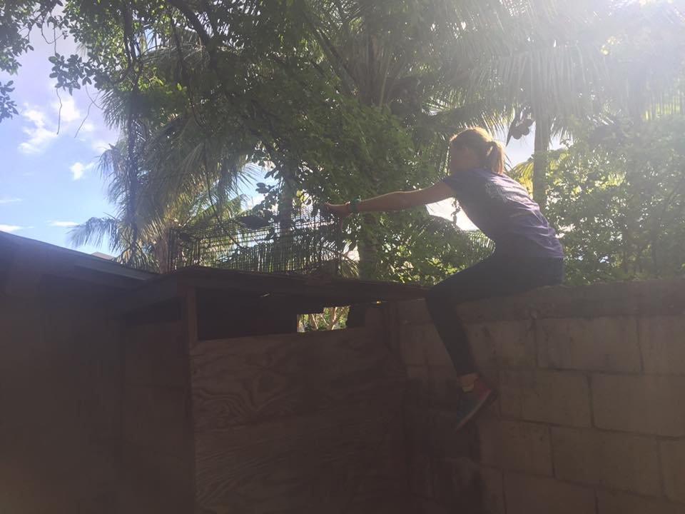Gabby setting a cat trap