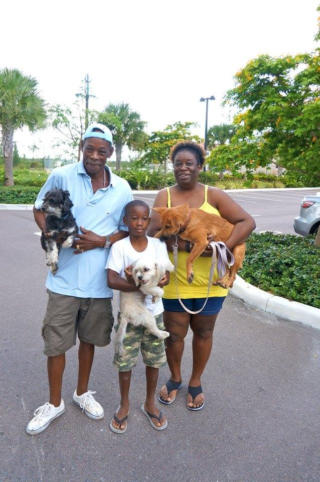 A family brings in their pets for spay/neuter