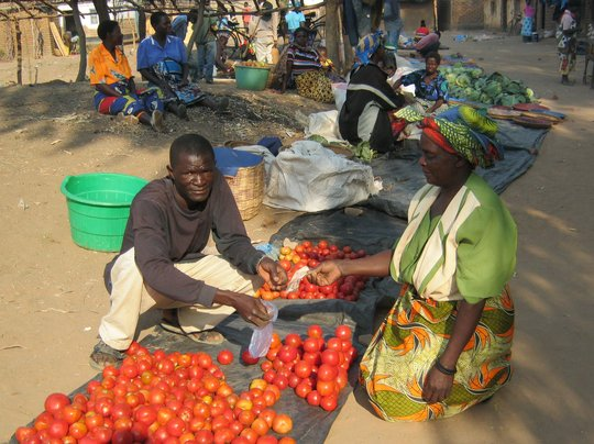 Micro Loans for 50 women affected by HIV and AIDS