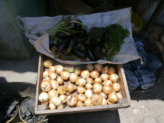 small business in Les Cayes