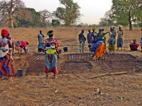 Malian Women preparing a garden for planting