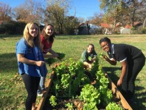 Volunteering at Beyond Housing's Community Garden