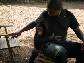 Toto and his caretaker Ousmane in January 2014.
