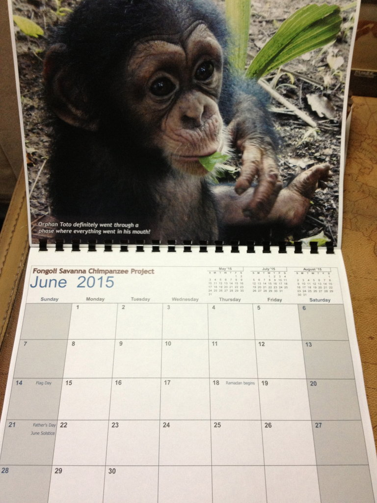 Toto calendar