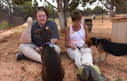 Support Best Friends Animal Sanctuary