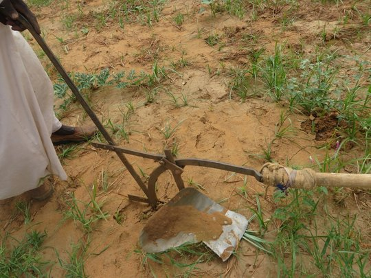 Tilling the land in the hope of seed for planting