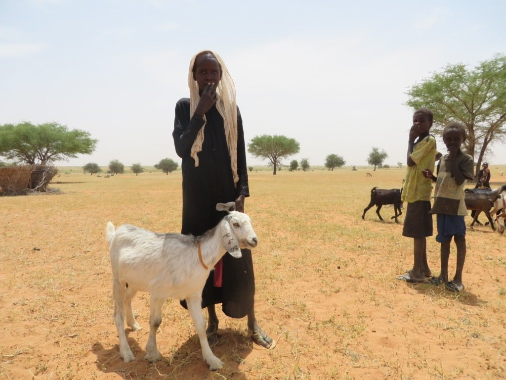 New goats mean new hope for a family